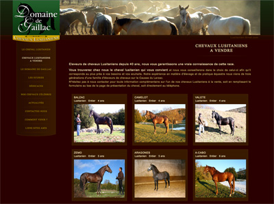 http://www.lusitanien-arnal.com/chevaux-lusitaniens-a-vendre.php target=blank